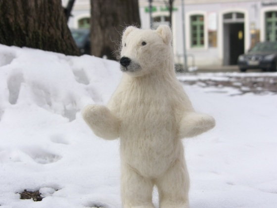white bear, snow bear
